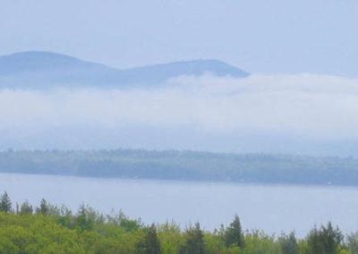 Foggy Gunstock